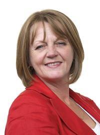 Jocelyn Davies, Assembly Member