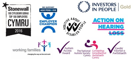 Several logos for external recognition recieved by the Assembly. Stonewall Top Employer for LGBT people, Age Positive, Positive About Disabiled People, Investors in People Gold, Action on Hearing Loss Charter Mark, Working Families Top Employers, and National Autistic Society Access Award